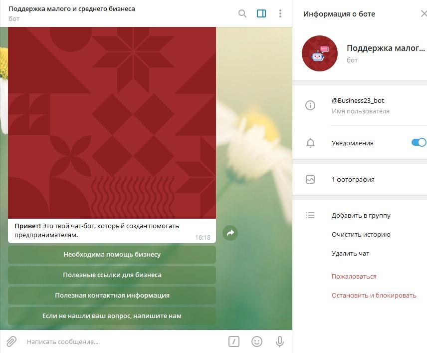 na_kubani_zapustili_chat_bot_v_pomoshch_predprinimatelyam