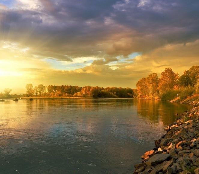 telo_muzhchiny_obnaruzhili_v_reke_kuban_pod_armavirom