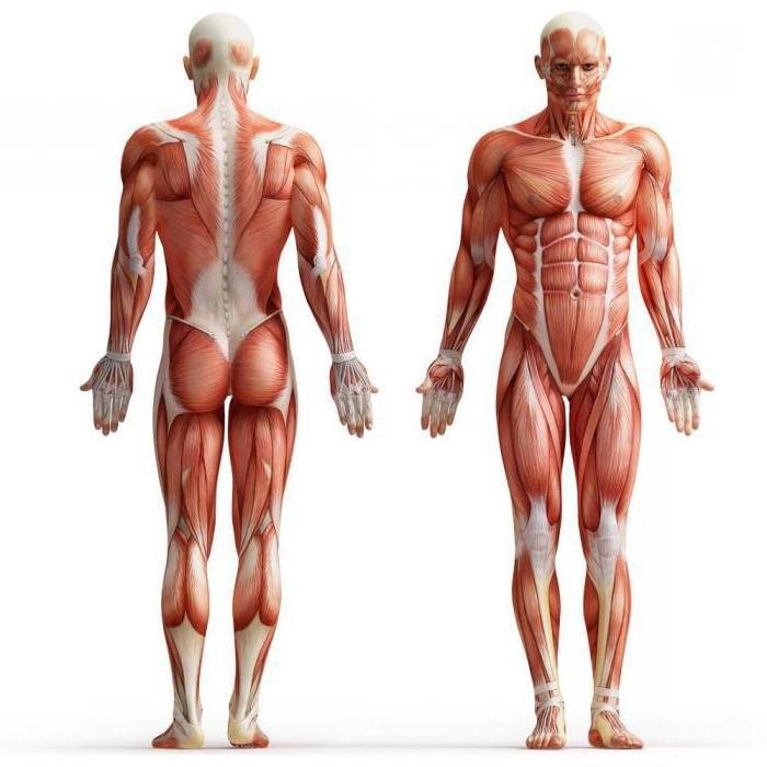 Симптомы рака: какие сигналы дает тело