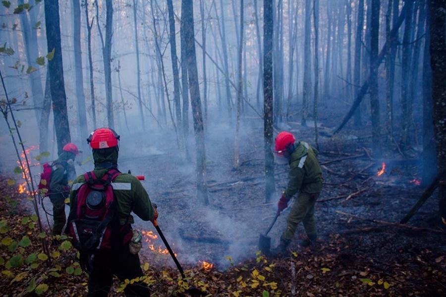 В Северском районе из-за лесных пожаров введен режим ЧС