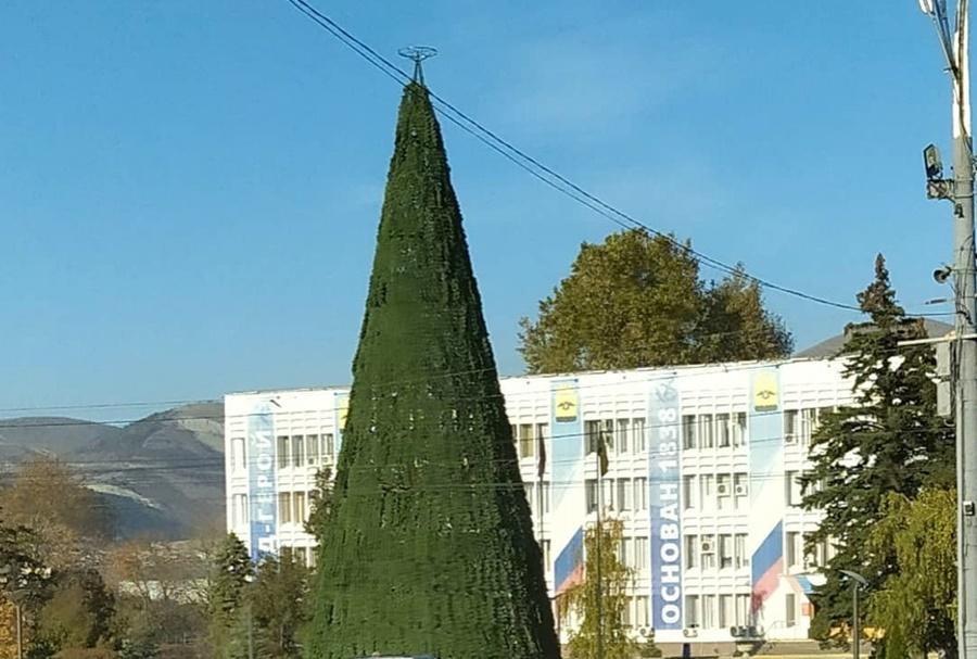 В Новороссийске почти за два месяца до Нового года установили елку