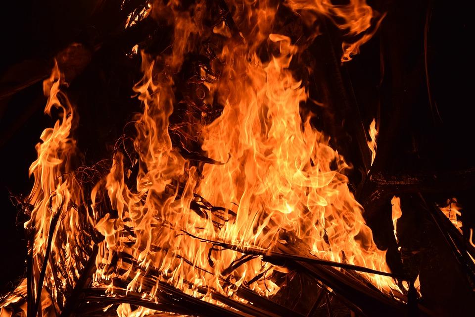 Возобновлено тушение пожара на плавнях в Анапе