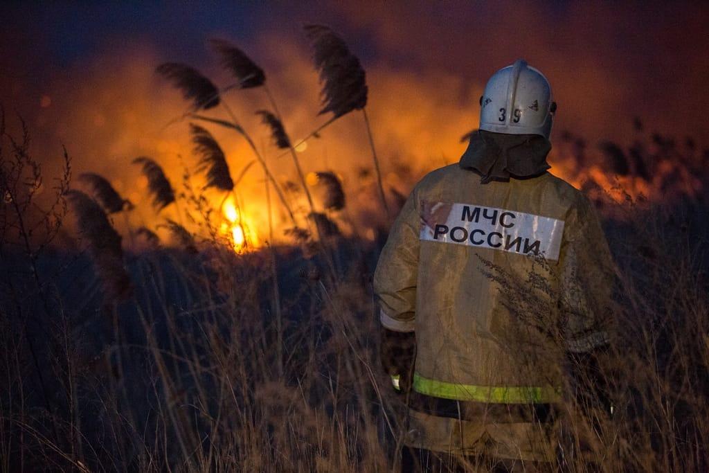 На Кубани потушили крупный пожар в плавнях