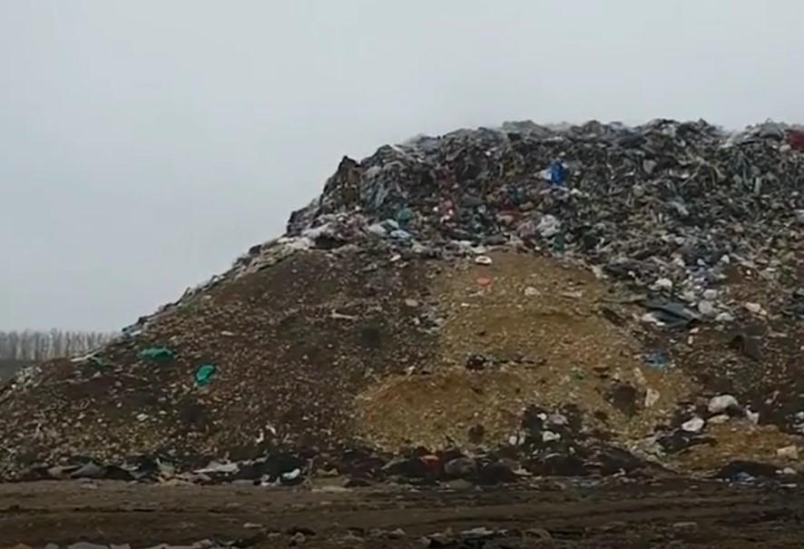 Жители Белореченского района требуют запретить работу мусорного полигона