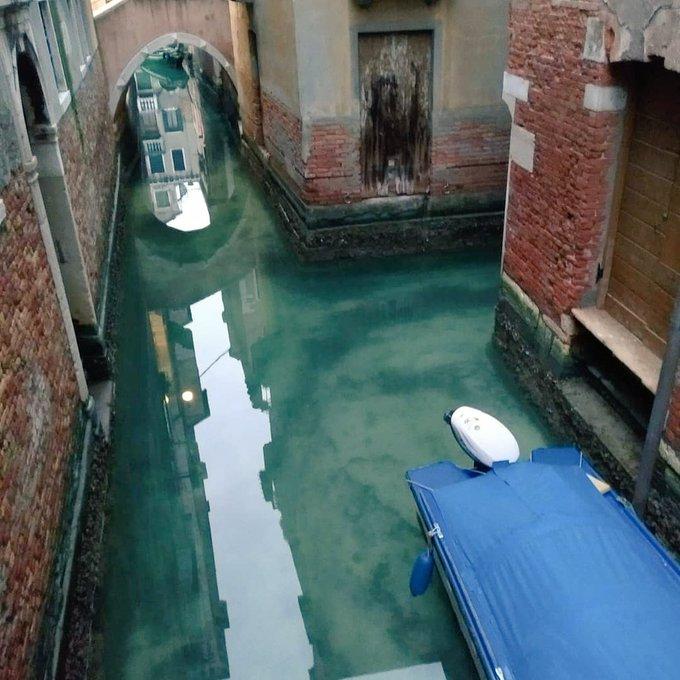 В Венеции вода в каналах стала чистой благодаря карантину