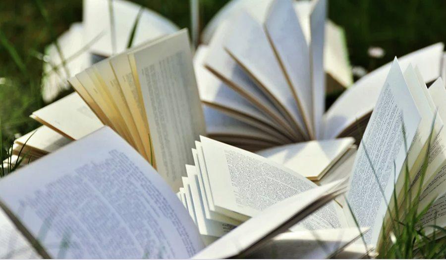 Впервые в Краснодаре пройдет Южный книжный фестиваль