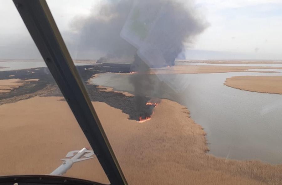 Крупный пожар в плавнях Темрюкского района потушен