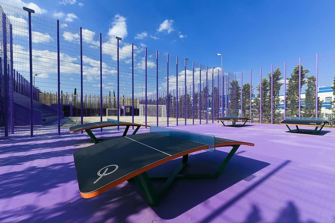 В парке Галицкого открылись спортплощадки