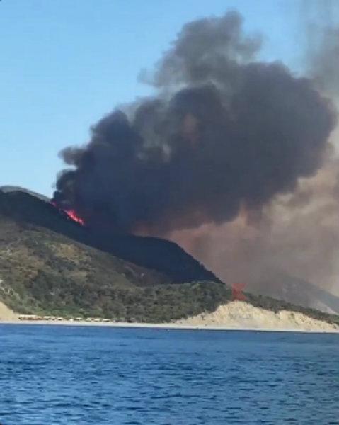 На Кубани бушуют два крупных лесных пожара