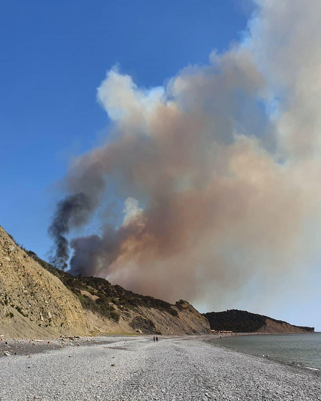 К тушению пожара в Анапе привлечена авиация и более 200 человек