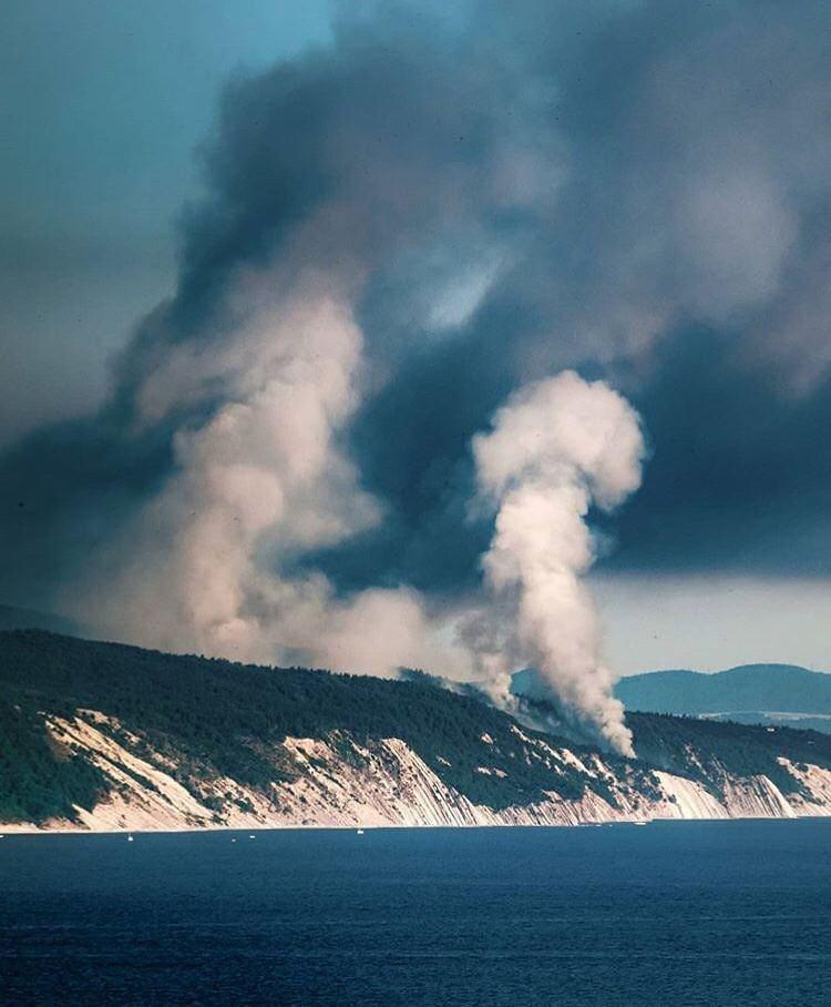В Анапе потушили масштабный лесной пожар на Утрише