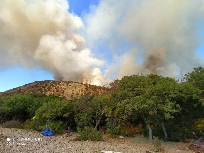 Туристы спасаются бегством от лесного пожара вблизи поселка Малый Утриш