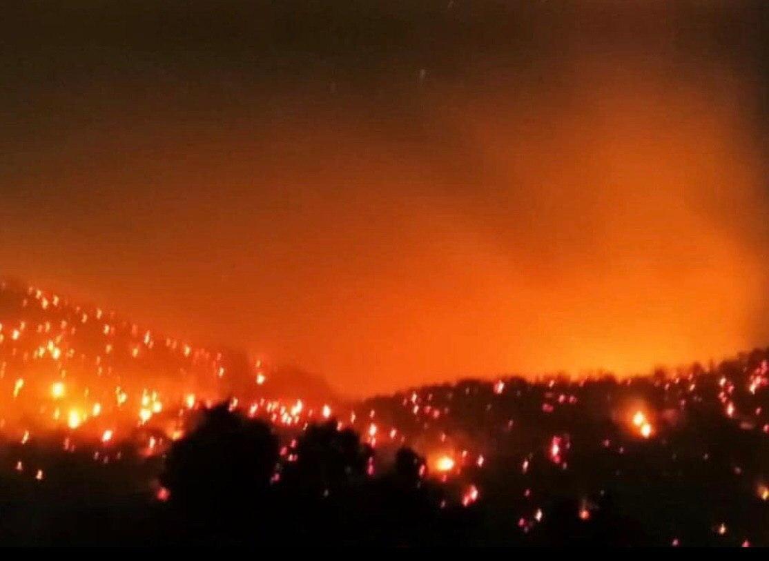 Самолеты из Московской области и Красноярского края летят тушить пожар на Утрише