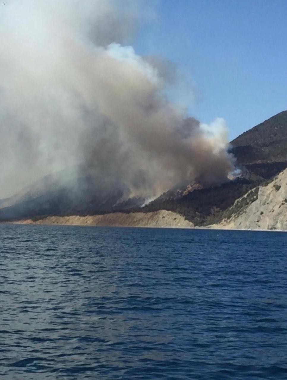 Прокуратура организовала проверку причин лесных пожаров на Кубани
