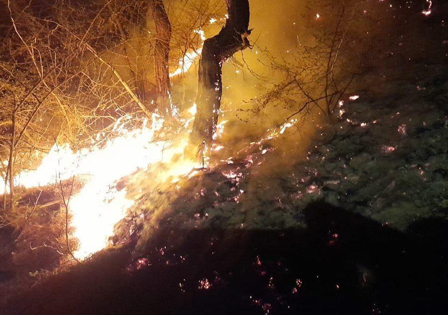 В Новороссийске вновь загорелся лес на горе Колдун