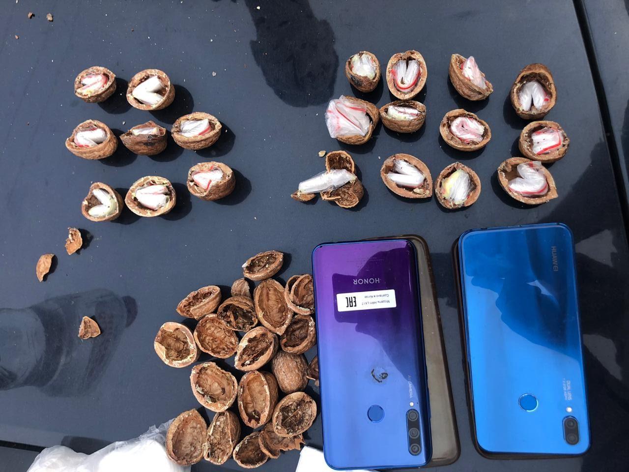 В Краснодаре наркоторговец делал закладки в грецких орехах