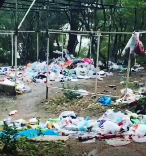 Сосновка в Геленджике превратилась в мусорную свалку