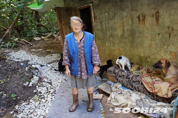 В Сочи снесли хибару «лесной бабушки», чьи собаки нападали на людей