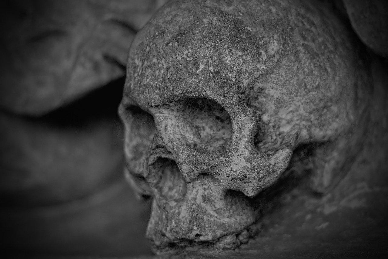 На Кубани в Темрюкском районе обнаружен скелет мужчины