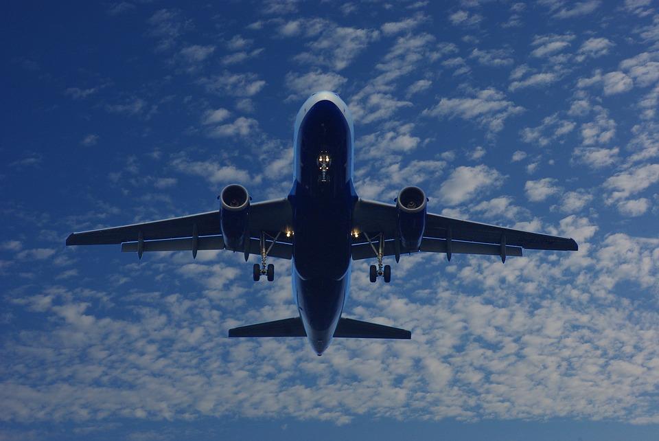 Прокуратура организовала проверку после попадания птицы в турбину самолета в Сочи