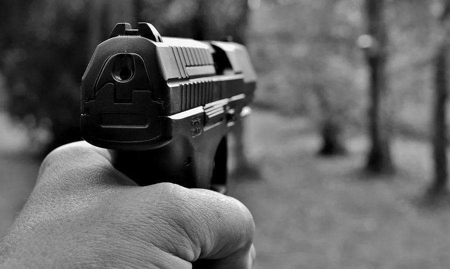 В Анапе фермер застрелил мужчину, чтобы его коровы могли пастись где угодно