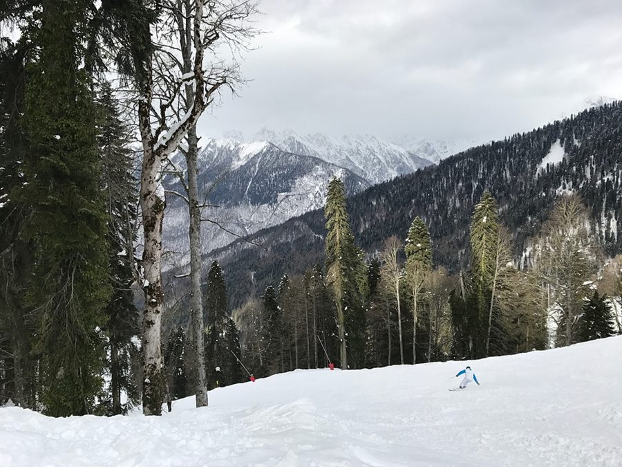 В Сочи ожидается мокрый снег и гололедица