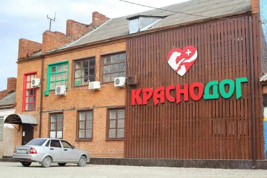 Власти Краснодара заявили об использовании «Краснодога» для передержки бездомных животных на время стройки муниципального приюта. В «Краснодоге» не знают об этом