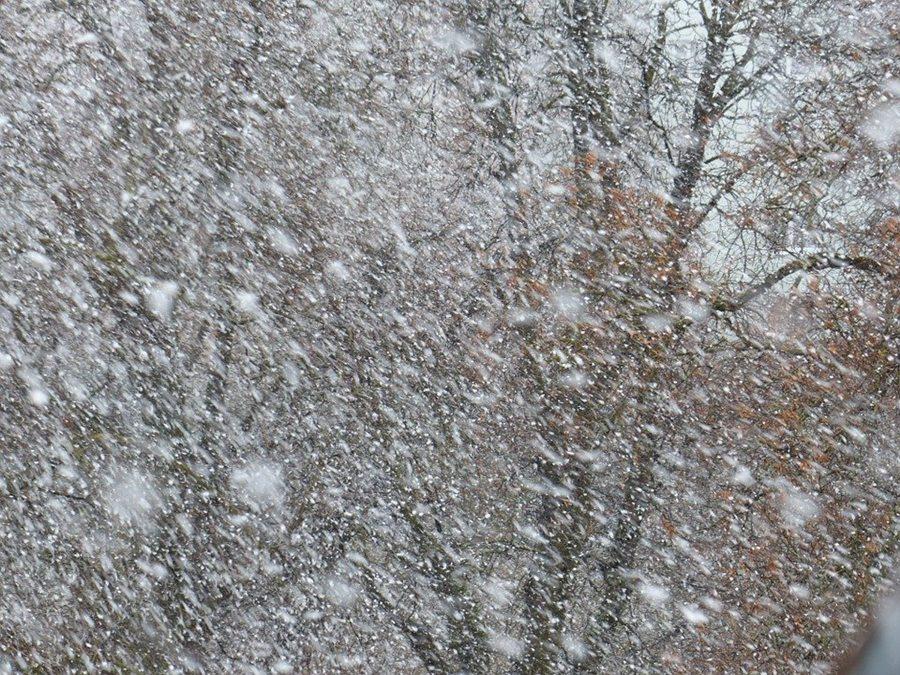На Кубань обрушится снегопад с метелью и штормовым ветром до 27 м/с