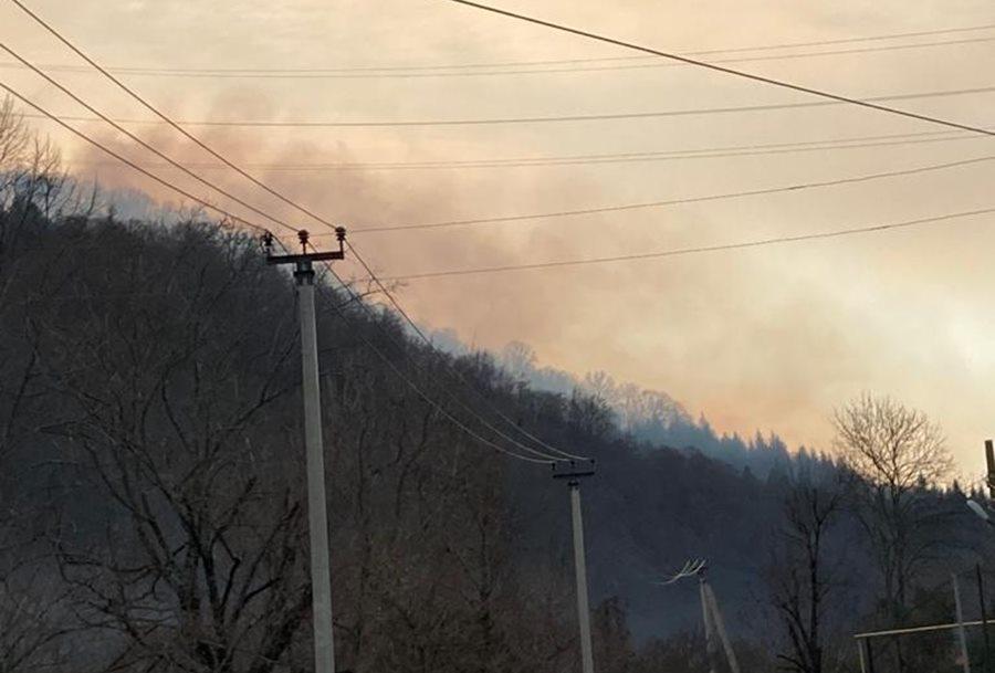 В Сочи горит лес на площади 5,5 га