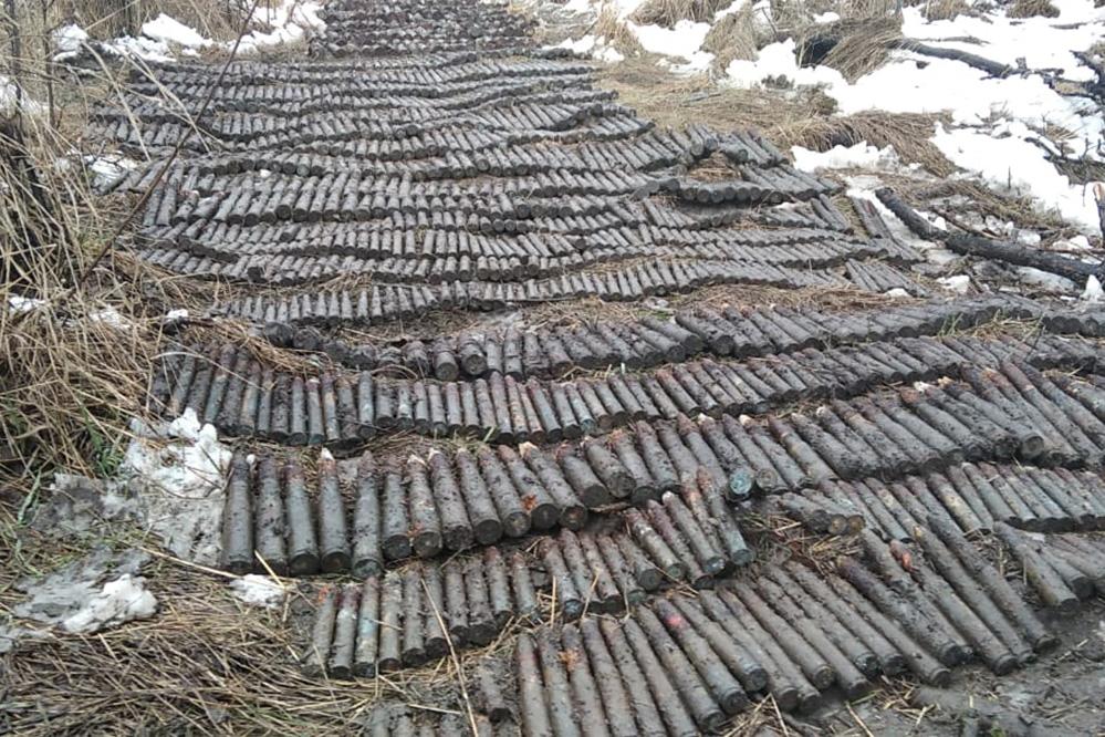На Кубани более 4 тысяч боеприпасов времен ВОВ за сутки уничтожил ОМОН Росгвардии