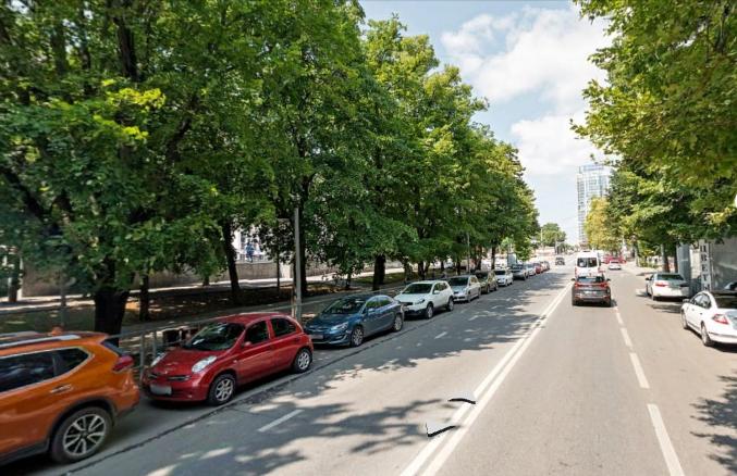 Жители Краснодара могут онлайн сообщить о некачественном уходе за деревьями или незаконной вырубке