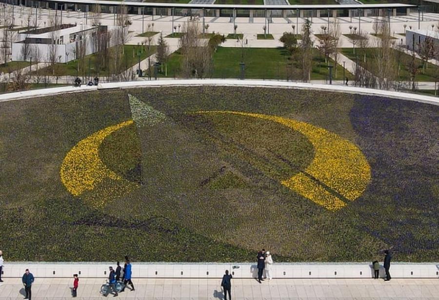 В парке «Краснодар» выложили картину из 140 тысяч цветов