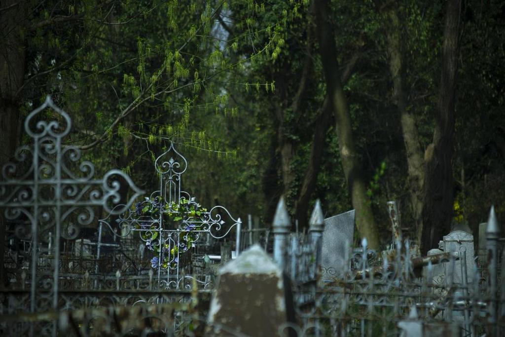 В Краснодаре ограничат посещение кладбищ 2 и 11 мая