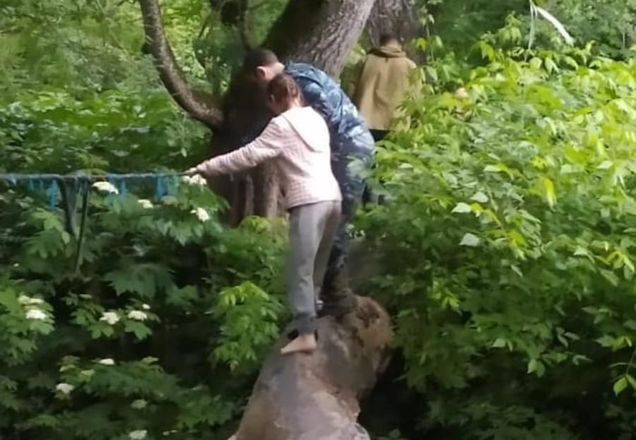 В Горячем Ключе в лесу заблудились грибники