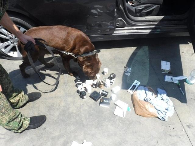 В порту Новороссийска служебная собака нашла в автомобилях из США наркотики