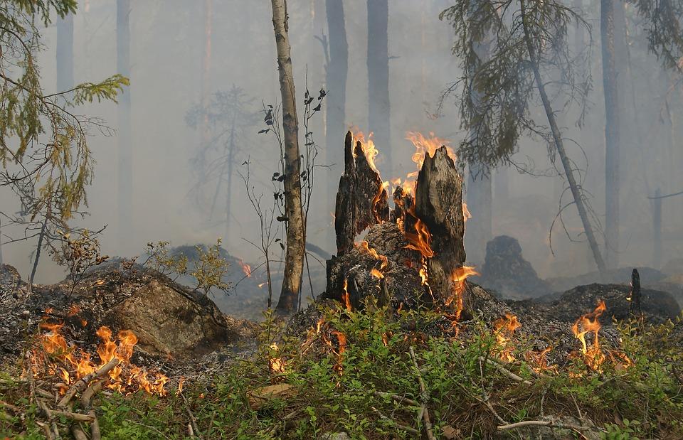 На Кубани продлено штормовое предупреждение по пожароопасности