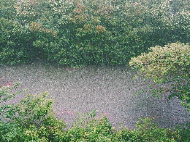 На Кубани с 12 по 14 августа ожидаются ливни, град и подъемы уровня рек