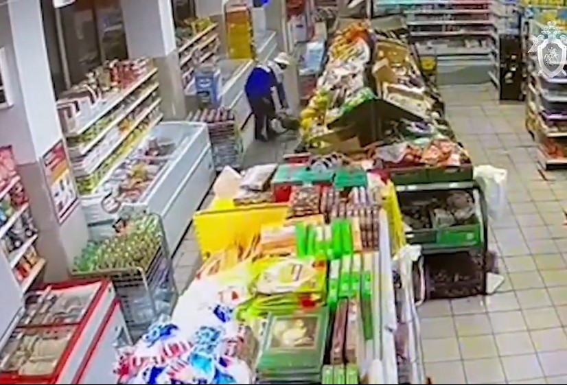 СК назвал приоритетную версию причины смерти москвички и ее внучки