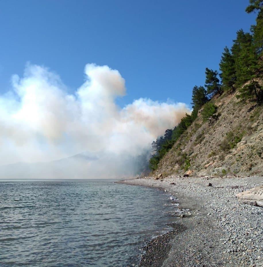 Под Геленджиком потушили масштабный лесной пожар