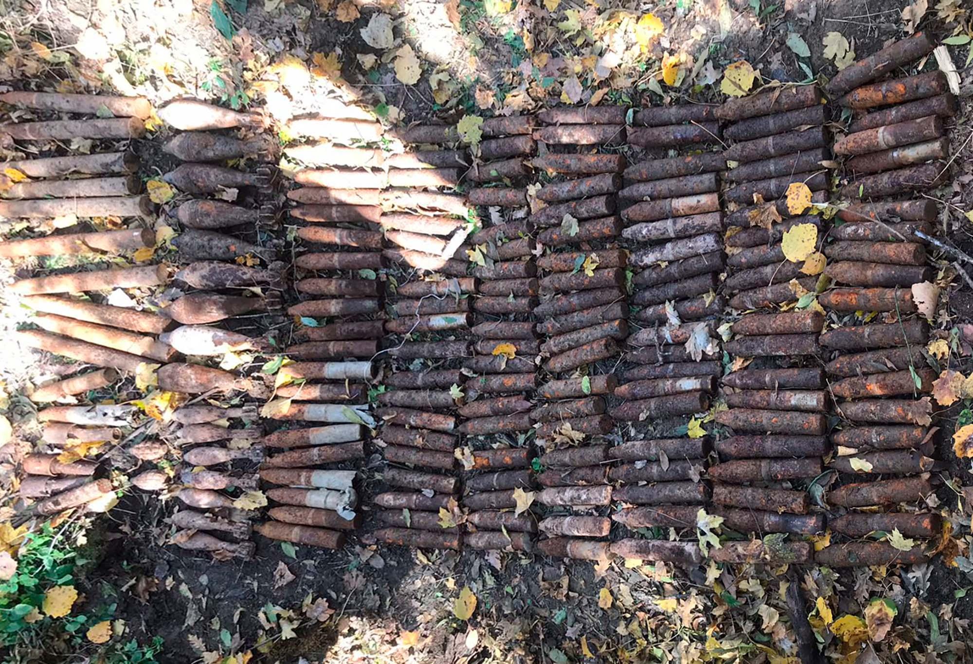 Житель Краснодара пошел в лес за грибами, а нашел боеприпасы