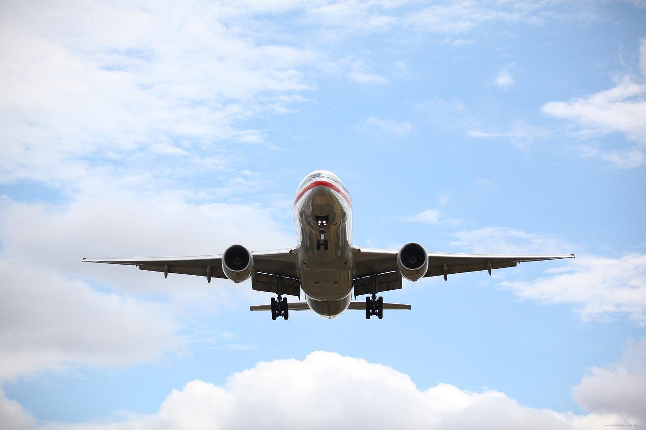 Пассажирка самолета Анапа - Москва покусала стюардессу